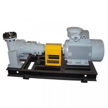 TOKYO KEIKI P21VMR-10-CC-20-S121B-J P*V Series Piston Pump