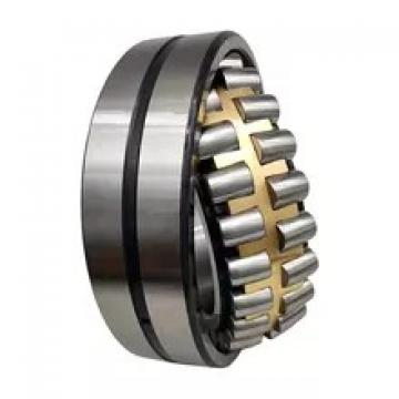 0.984 Inch   25 Millimeter x 2.047 Inch   52 Millimeter x 0.591 Inch   15 Millimeter  SKF NJ 205 ECP/C3  Cylindrical Roller Bearings