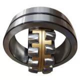 CONSOLIDATED BEARING 6205/100-2RS  Single Row Ball Bearings